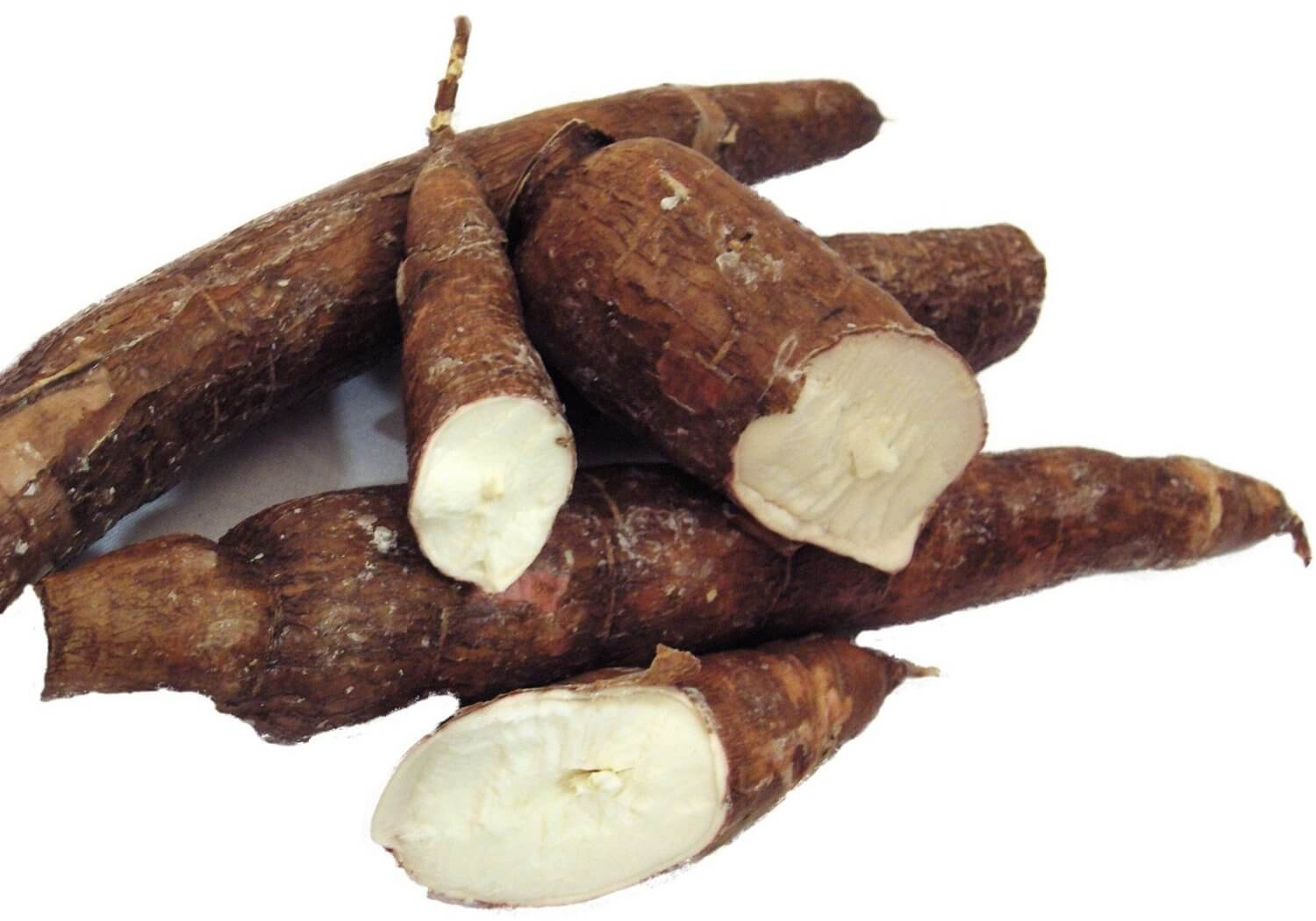 crop-farming-business-ideas-cassava-farming-business-idea