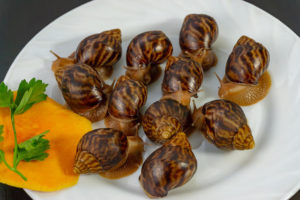 benefits-of-snail-farming-image