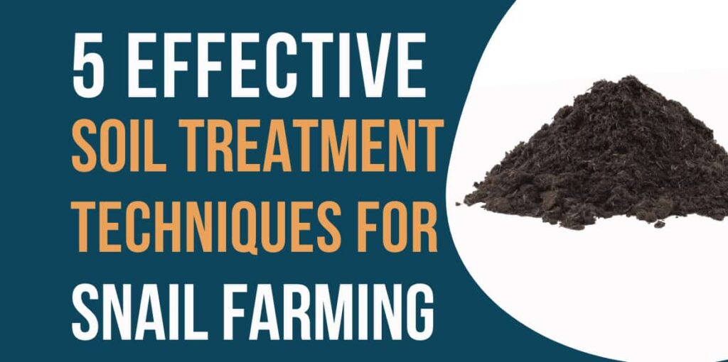 Effective soil treatment techniques snail farming