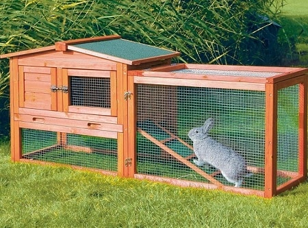 proper-rabbit-housing-system-1